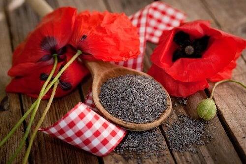 Graines de pavot : découvrez ses 5 bienfaits sur la santé