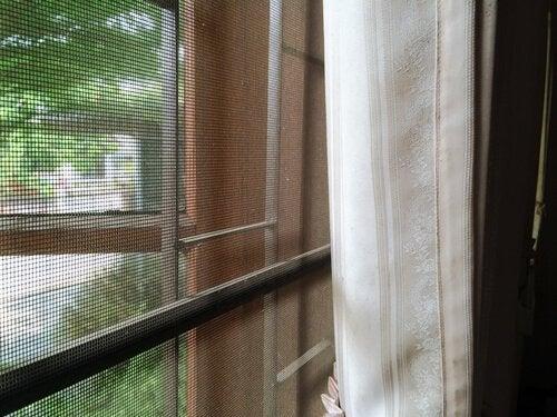 Les moustiquaires permettent de prévenir les piqûres de moustiques