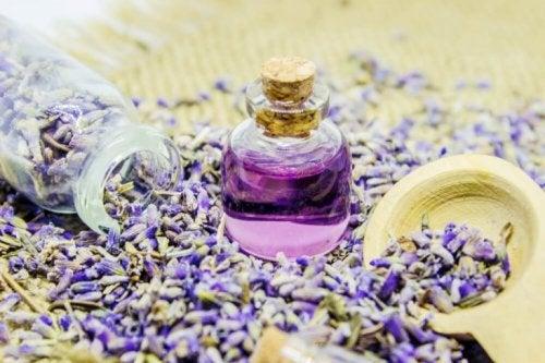 Parfumer votre maison avec la lavande.
