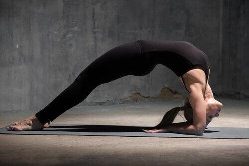 4 postures de yoga pour faire le plein d'énergie