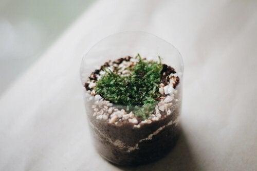 Apprenez à réaliser des pots pour les plantes avec des bouteilles en plastique