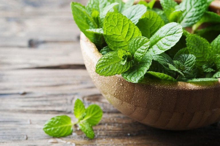 4 recettes délicieuses avec de la menthe