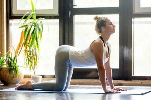 Routine de yoga pour soulager les douleurs de dos