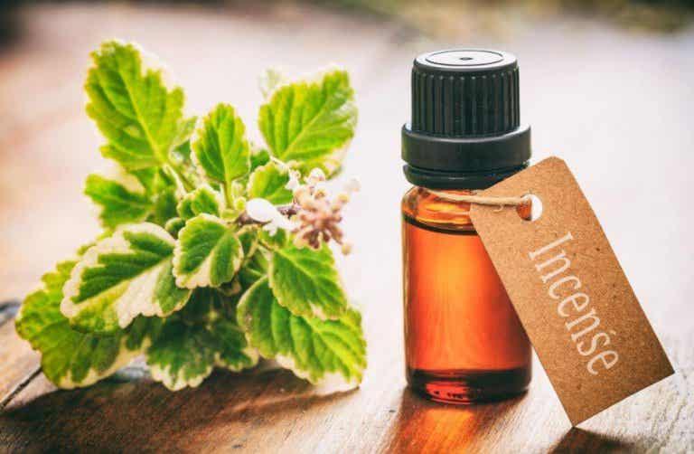 8 usages de l'huile essentielle d'encens que vous devez connaitre