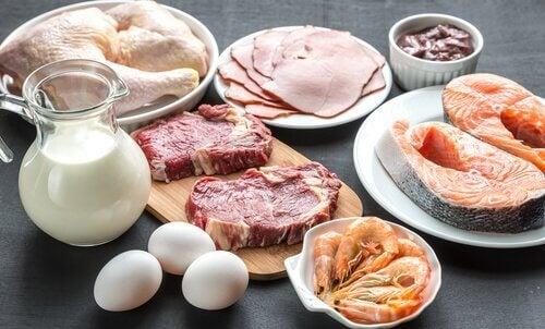 Aliments riches en protéines que vous pouvez inclure à votre régime alimentaire.