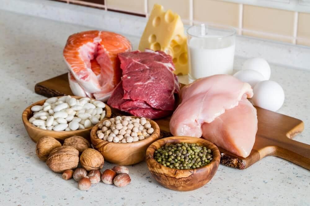 Régime alimentaire riche en protéines.