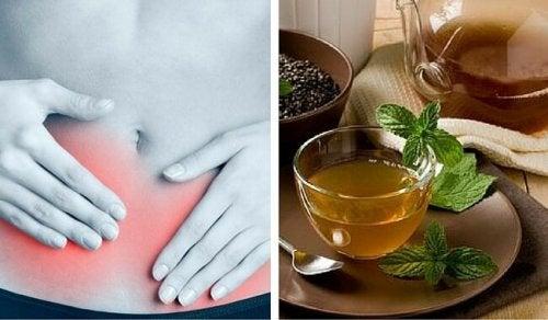 le boldo est efficace contre les maladies urinaires