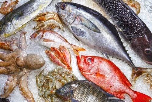 le poisson et les fruits de mer ne sont pas recommandés pour un bébé