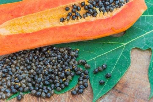 Les graines de papaye permettent de prévenir les infections parasitaires