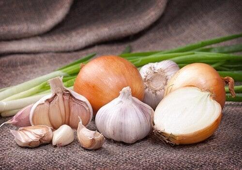 recette soupe oignon et ail
