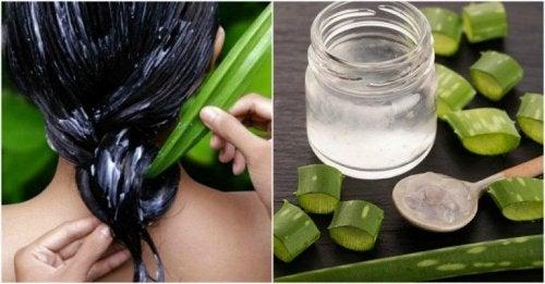 les meilleurs bienfaits de l'aloe vera : soin des cheveux et du cuir chevelu