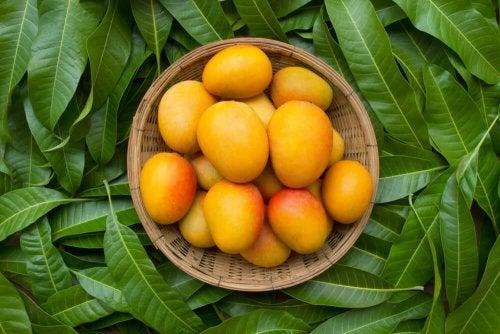Constipation : les bienfaits de la mangue