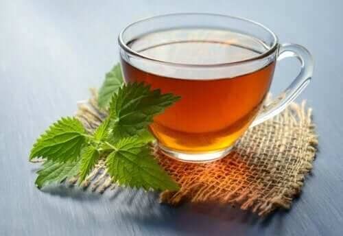 5 boissons à base d'herbes pour prévenir les calculs rénaux