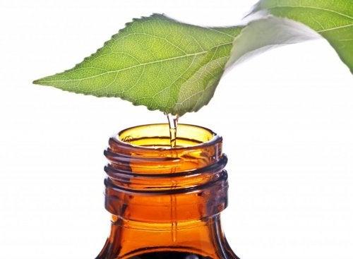 5 huiles essentielles médicinales les plus efficaces qui vous aideront à soulager la congestion nasale de manière naturelle