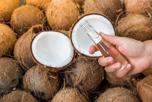 huile de coco contre la blastomycose