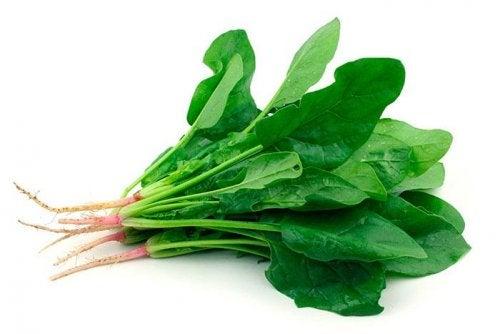 les légumes verts pour prendre soin de sa vue