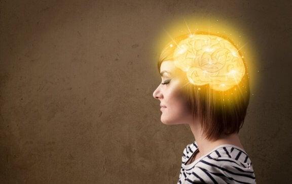 Les meilleurs conseils pour conserver un cerveau jeune et vif