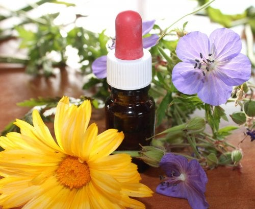 huiles aromatiques : huile de lavande