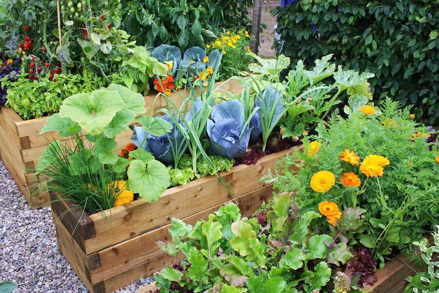 6 idées pour concevoir un jardin avec des fleurs