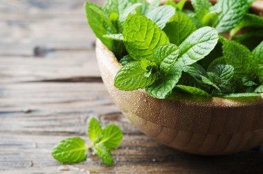 Halitose : 3 remèdes naturels à base de menthe