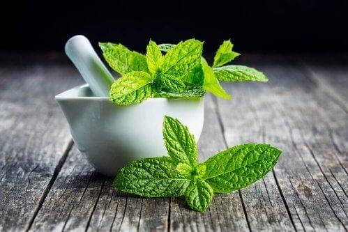 propriétés du thé à la menthe pour la santé