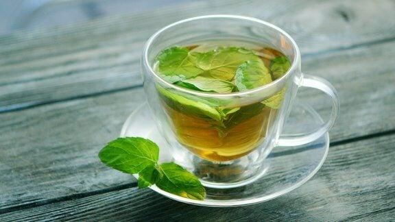 Découvrez les nombreuses propriétés du thé à la menthe pour la santé