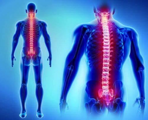 l'hyperréflexie autonome et la lésion de la moelle épinière