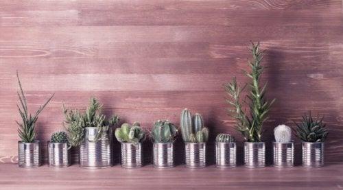 3 idées ingénieuses pour recycler les boîtes de conserve