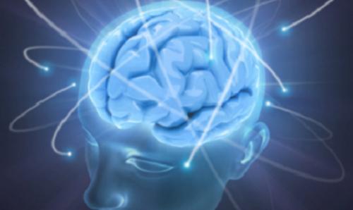 Cerveau sain
