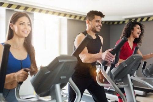 l'acide lactique et l'exercice