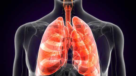 Qu'est-ce que la peste pulmonaire et quels sont ses symptômes ?