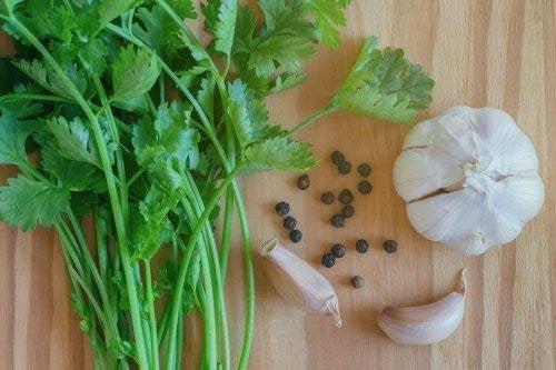 Le mélange d'ail et de coriandre fait partie des remèdes à l'ail efficaces contre l'acné