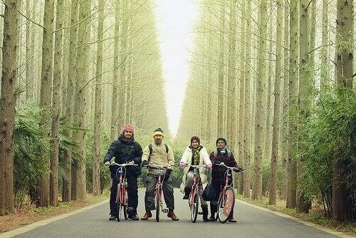 Se balader en forêt en famille