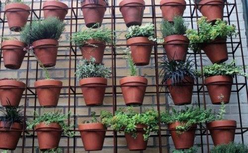 décorer son intérieur avec un jardin vertical