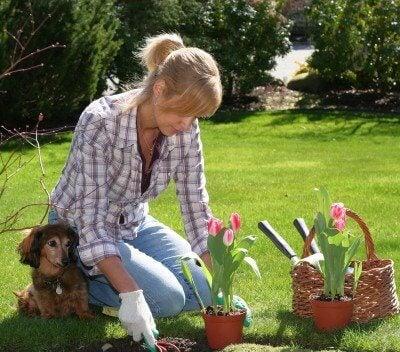 jardiner pendant ses vacances à la maison