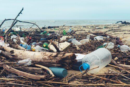 produits jetables en plastique