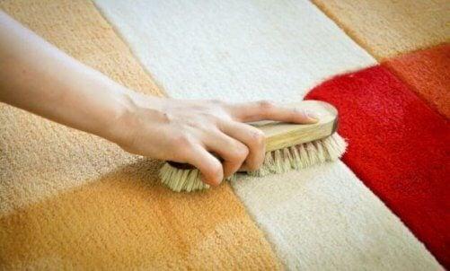 nettoyer un tapis avec une brosse