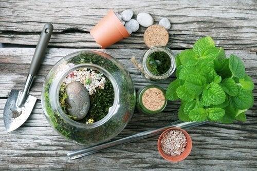 Des conseils pour fabriquer des terrariums pour votre intérieur