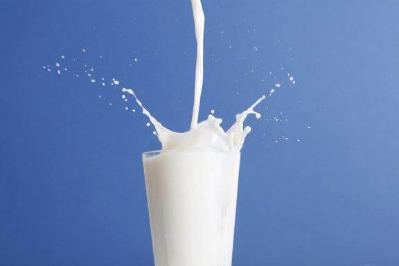 Lait écrémé versus lait entier : la polémique