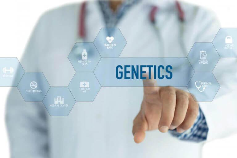 la génétique peut être un des facteurs responsables de l'obésité