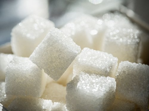 morceaux de sucre raffiné