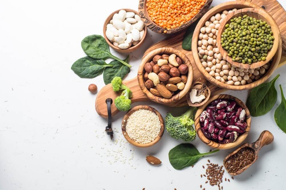 la qualité des protéines végétales