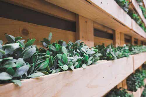 6 éléments que vous pouvez recycler pour décorer votre jardin