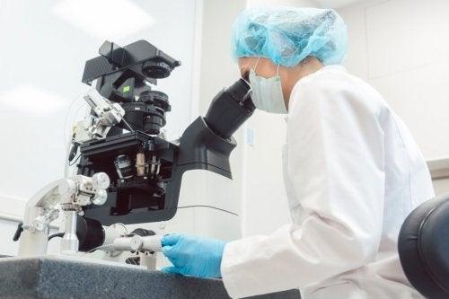 Le diagnostic génétique préimplantatoire (DGP)