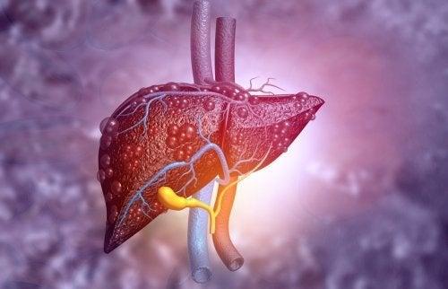 L'atrésie des voies biliaires : symptômes et traitement