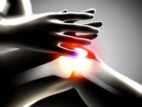 arthropathie dégénérative du genou