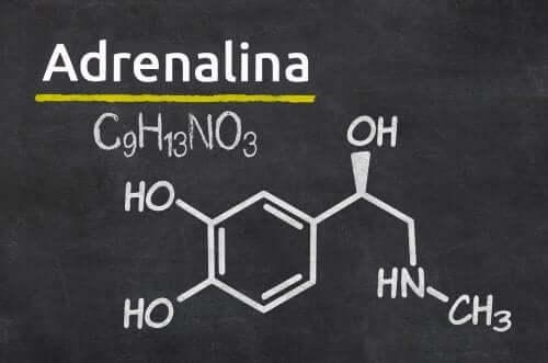 La molécule de l'adrénaline