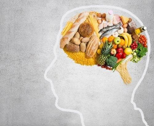 Quelles graisses votre cerveau consomme-t-il ?