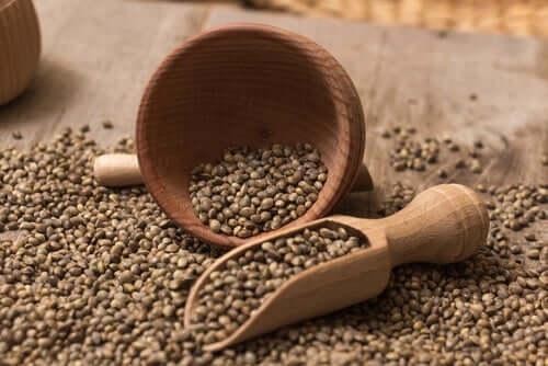 Des graines de chanvre pour un smoothie protéiné