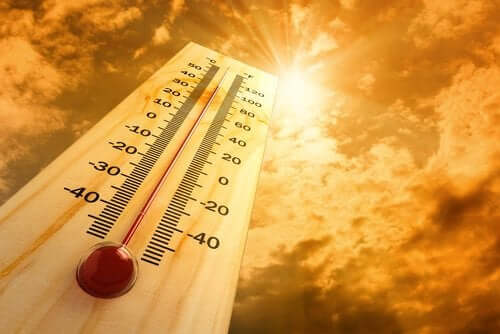 Les 6 effets de la chaleur sur l'organisme